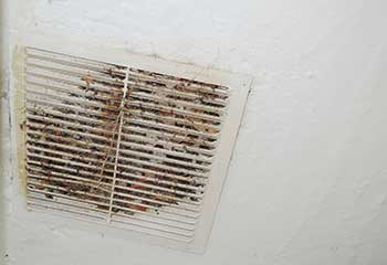 Vent Replacement Near Redwood | Air Duct Cleaning San Marcos